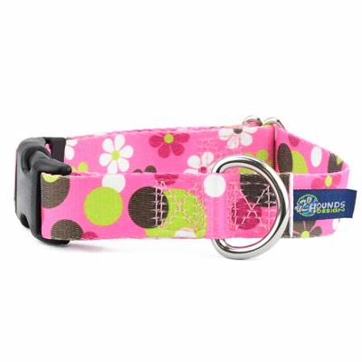 5/8″ and 1″ EarthStyle Daisy Dot Dog Collars & Leads