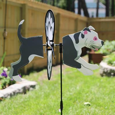 Petite Spinner - Pit Bull