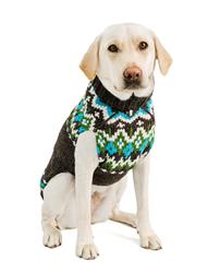 Charcoal Fairisle Wool Dog Sweater