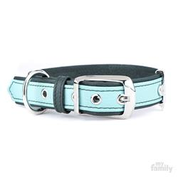 Light Green & Green Leather FIRENZE Collar | Leash