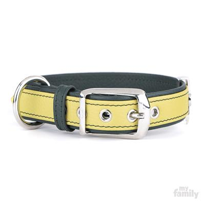 Lime & Green Leather FIRENZE Collar | Leash