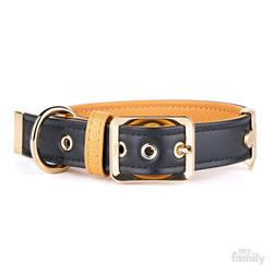 Black & Tan Leather HERMITAGE Collar | Leash