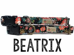 Beatrix – Organic Cotton Collars & Leashes