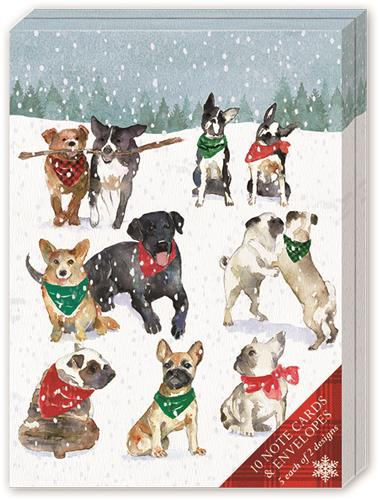 Snow Flurry Pets Folded Pouch Notes