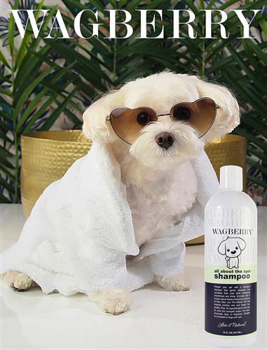 Wagberry All About The Spa Shampoo  - 16 fl. oz.