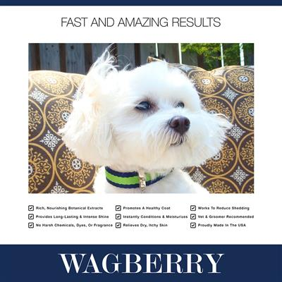 Wagberry All About The Spa Conditioner  - 16 fl. oz.