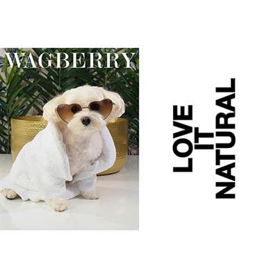 Wagberry All About The Kiss Dental Spray - 4 fl. oz.