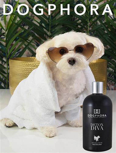 Dogphora Detox Repair Body Wash - 16 fl. oz.