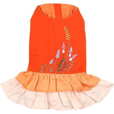 Color Block Garden Dress
