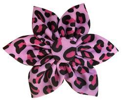 Pink Leopard Pinwheel by Huxley & Kent