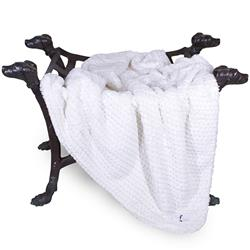 Paris Dog Blanket Collection: Ivory