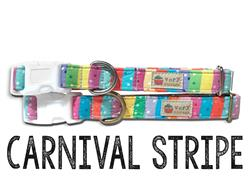 Carnival Stripe – Organic Cotton Collars & Leashes