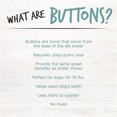 Dipped Button Elk Antler Dog Chew