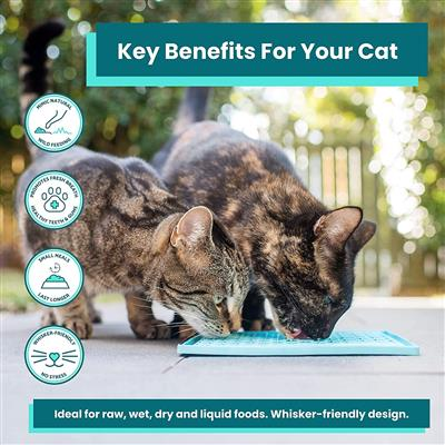 LickiMat Playdate - for Cats