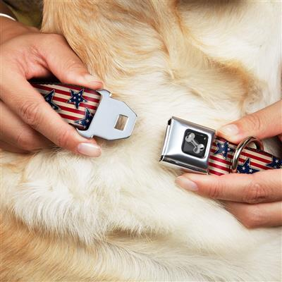 Dog Bone Black/Silver Seatbelt Buckle Collar - Americana Stars & Stripes Red/White/Blue/White
