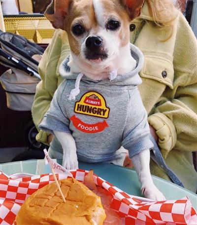 Hoodie with Foodie Patch