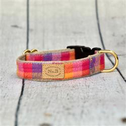 "1"" Lupine Flannel Collar and Leads"