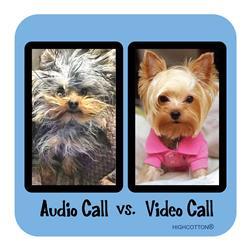 Audio Call vs. Video Call Coaster