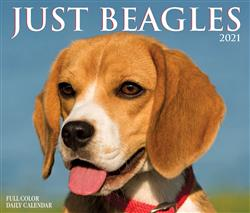 Beagles 2021 Box Calendar