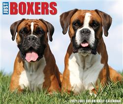 Boxers 2021 Box Calendar