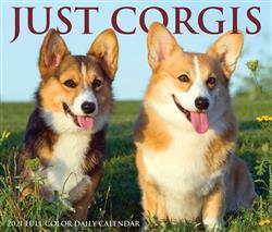 Corgis 2021 Box Calendar