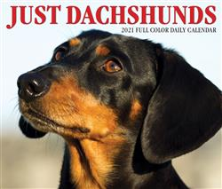 Dachshunds 2021 Box Calendar