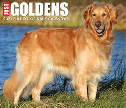 Goldens 2021 Box Calendar