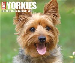 Yorkies 2021 Box Calendar