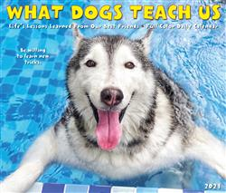 What Dogs Teach Us 2021 Box Calendar