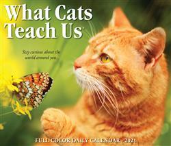 What Cats Teach Us 2021 Box Calendar