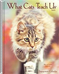What Cats Teach Us 2021 Engagement Calendar