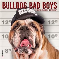 Bulldog Bad Boys 2021 Mini Calendar