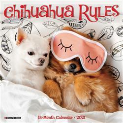 Chihuahua Rules 2021 Mini Calendar