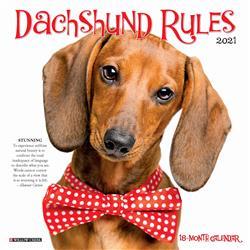 Dachshund Rules 2021 Mini Calendar