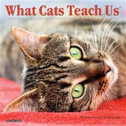 What Cats Teach Us 2021 Mini Calendar