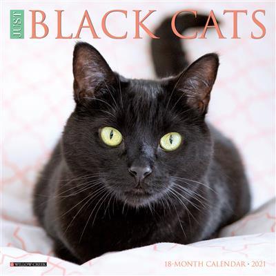 Black Cats 2021 Mini Calendar