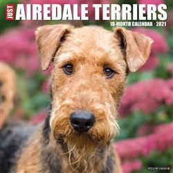 Airedale Terriers 2021 Wall Calendar