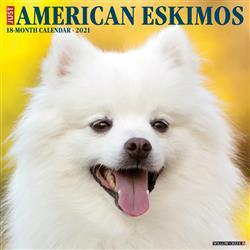 American Eskimos 2021 Wall Calendar