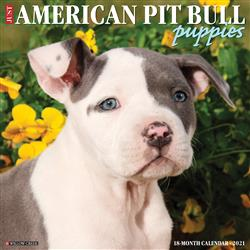 American Pit Bull Terrier Puppies 2021 Wall Calendar