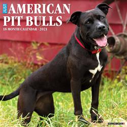 American Pit Bull Terriers 2021 Wall Calendar