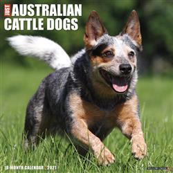 Australian Cattle Dogs 2021 Wall Calendar