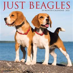 Beagles 2021 Wall Calendar