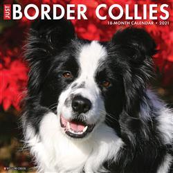 Border Collies 2021 Wall Calendar
