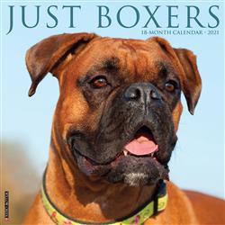 Boxers 2021 Wall Calendar