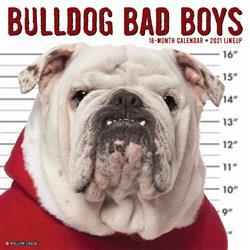 Bulldog Bad Boys 2021 Wall Calendar