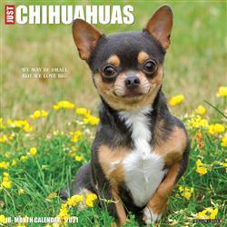 Chihuahuas 2021 Wall Calendar