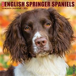 English Springer Spaniels 2021 Wall Calendar