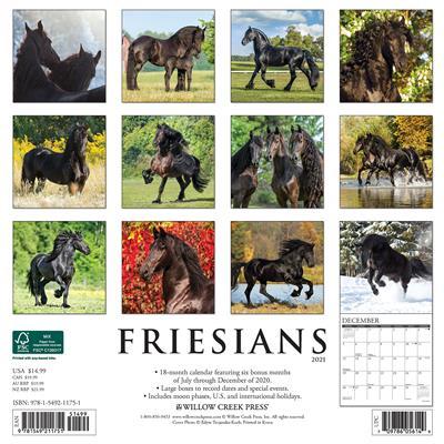Friesians 2021 Wall Calendar