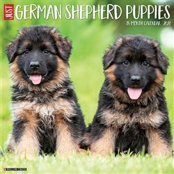 German Shepherd Puppies 2021 Wall Calendar