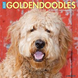 Goldendoodles 2021 Wall Calendar
